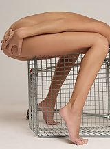 Sexy brunette spreading on a shopping cart